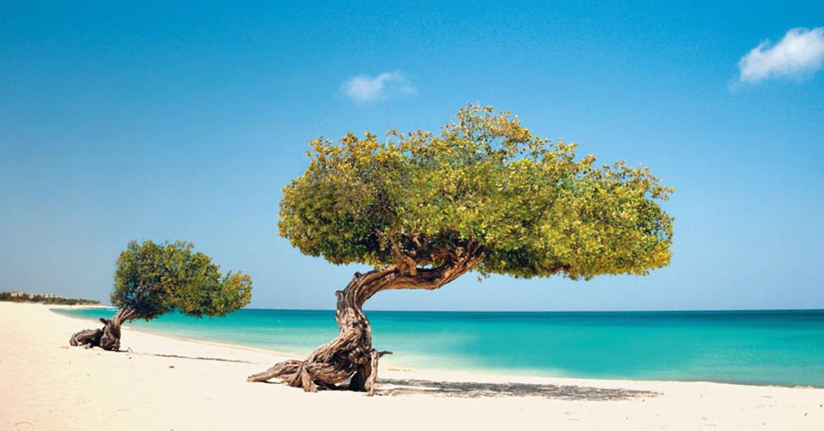 Hotely Aruba