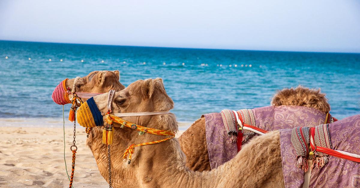 Hotely Omán